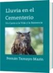 Lluvia en el Cementerio - Fernán Tamayo Marín