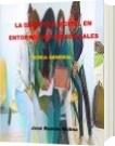 La didáctica digital en entornos no presenciales - Jose Ramon Molina Sulbaran