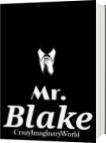 Mr Blake - CrazyImaginaryWorld - Emily Salazar
