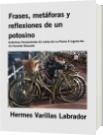 Frases, metáforas y reflexiones de un potosino - Hermes Varillas Labrador