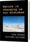 Nature is charging us our mistakes - Luis Arturo Acevedo Acevedo