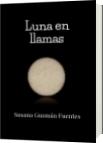 Luna en llamas - Susana Guzmán Fuentes